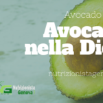 Avocado e Dieta
